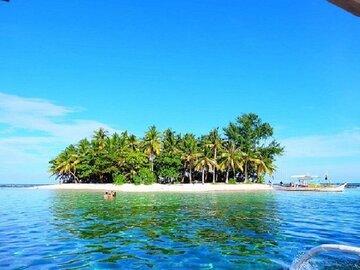 Plantation Tours: Siargao 3 Island hopping + Mam On Island